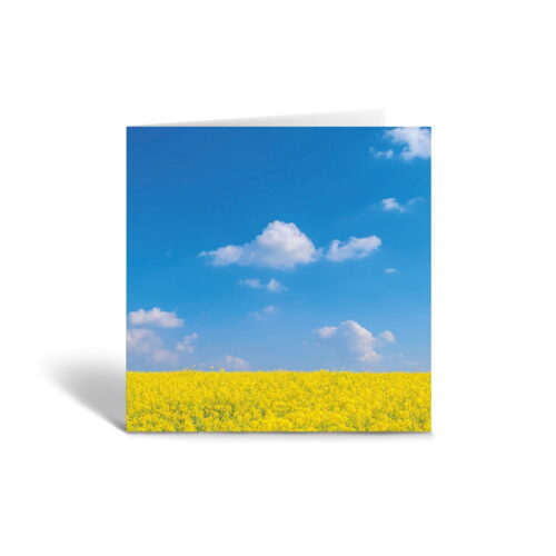 Orange Fig Yellow & Blue Greetings Card Front