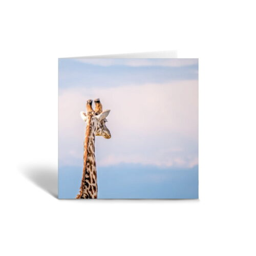 Orange Fig A Contemplating Giraffe Greetings Card Front