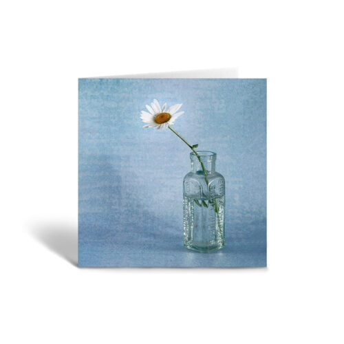 Orange Fig Daisy in a Bottle Greetings Card Front