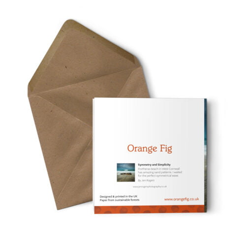 Orange Fig Symmetry and Simplicity Greetings Card Back