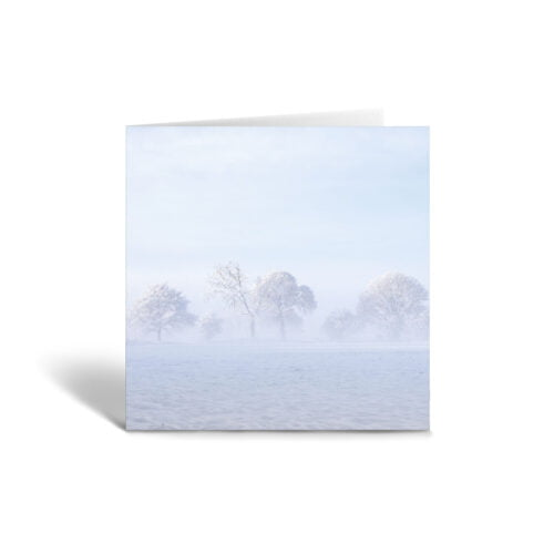 Orange Fig Misty Trees Greetings Card Front