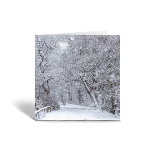 Orange Fig Snowy Day Greetings Card Front