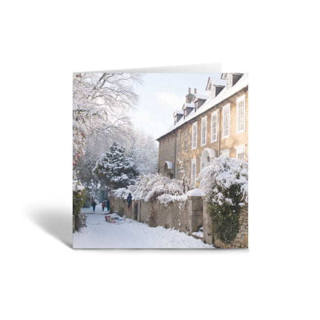 Orange Fig Willowvale Greetings Card Front