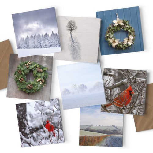 Orange Fig Winter Collection Greetings Card Pack